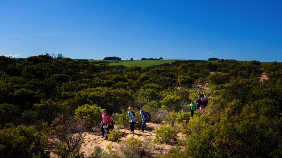 Bush walking near Kangaroobie
